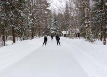Grotu prowincjonału parka łyżwy ślad obraz royalty free