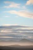 Groty Plaża, Hermanus, Południowa Afryka Obraz Royalty Free