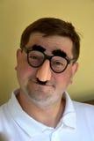 戴groucho马克思眼镜的人 免版税库存照片