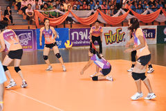 Ground accepting ball in volleyball players chaleng Royalty Free Stock Photo