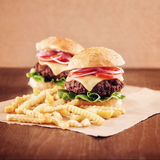 Ground beef Cheese Burger with French Fries. Ground beef Cheese Burger with Lettuce,Tomato and Red Onion with French Fries Royalty Free Stock Image