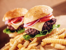 Ground beef Cheese Burger with French Fries. Ground beef Cheese Burger with Lettuce,Tomato and Red Onion with French Fries Royalty Free Stock Photo
