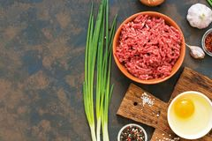 Ground beef. Ingredients for making cutlets, meatballs - ground beef, raw egg, spices, green onion on dark rustic background. Top. View, copy space Royalty Free Stock Image