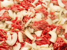 Ground beef and onions Stock Image