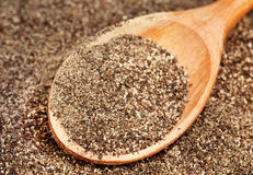 Ground black pepper (Piper nigrum) with wooden spoon Stock Photography