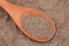 Ground black pepper in a wooden spoon Stock Images
