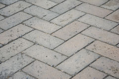 Ground brick. A brick paved surface, excellent architectural material Royalty Free Stock Images