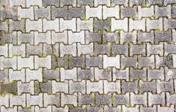 Ground brick in a way groove Royalty Free Stock Photos