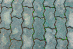 Ground bricks have grass in a way groove Royalty Free Stock Photos