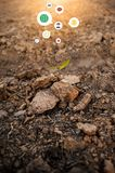 Ground, ground, brown background Organic farming close to nature stock photo
