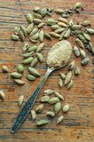 Ground cardamom in a spoon Royalty Free Stock Photos