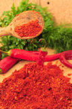 Ground cayenne pepper Royalty Free Stock Image