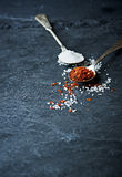 Ground chili pepper and rock salt on spoons stock photos