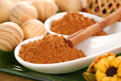 Ground cinnamon Stock Image