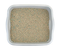 Ground clay cat litter in plastic litter-box Royalty Free Stock Photo