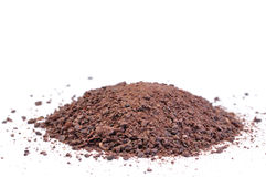 Ground cocoa Stock Image