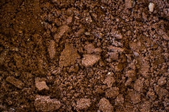 Ground coffe closeup Royalty Free Stock Photos