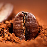 Ground Coffee with Roasted Coffee Beans , copyspace. Espresso T. Exture macro stock image