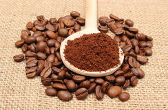 Ground coffee on wooden scoop and grains coffee Stock Photography