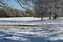 Winter Landscape Scene with trees and snow Stock Photography