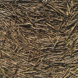 Ground covered in straw - Background Stock Photos