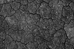Ground with crack. Black and white texture Stock Photos