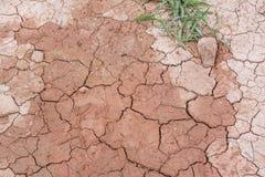 Ground crack Stock Photos