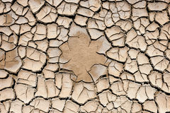 Ground cracked by the drought Royalty Free Stock Photos