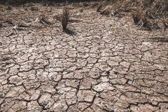 The ground cracks caused by drought caused by water shortages stock images