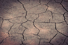 Ground cracks Royalty Free Stock Photo