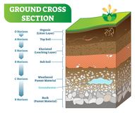Ground Cross Section vector illustration with organic, topsoil, subsoil and other horizon levels. Geological information poster stock illustration