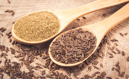 Ground cumin in a spoon and whole cumin. On the wooden background Stock Photography