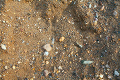 Ground dirt. Brown and wet ground dirt with stones Stock Images