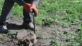 Ground drilling with hands stock video footage