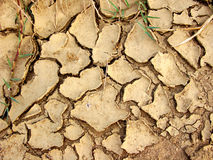 Ground in a drought Stock Images