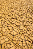 Ground in drought, soil texture and dry mud, produced by deforestation Royalty Free Stock Photo