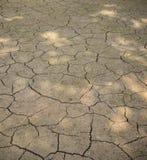 Ground dry Stock Photos