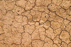 Ground dry Stock Photos