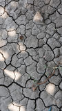 Ground dry. Summer in Thailand As a result, the dry ground Royalty Free Stock Photos