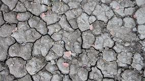 Ground dry. Summer in Thailand As a result, the dry ground Stock Photos