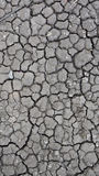 Ground dry. Summer in Thailand As a result, the dry ground Stock Images
