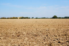 Ground field Stock Photo