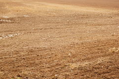 Ground field Royalty Free Stock Photo