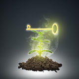 Ground with green plant and key sign Royalty Free Stock Photo