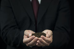 Ground in the hands Royalty Free Stock Photography