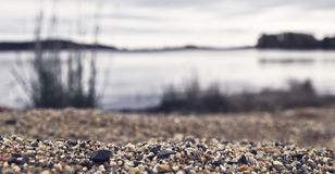Ground level photo of gravel, sand and some plants by a lake. Gravel and sand by the beach Royalty Free Stock Images