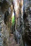 Ground level Tsingy Royalty Free Stock Image