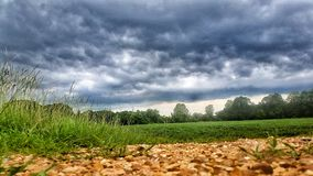 Ground level view. Storm clouds rolling in Stock Photography
