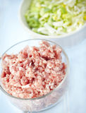 Ground meat and leeks Royalty Free Stock Photos