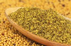 Ground Mustard Stock Photography